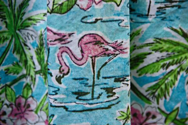 Flamingo_IMG_6608